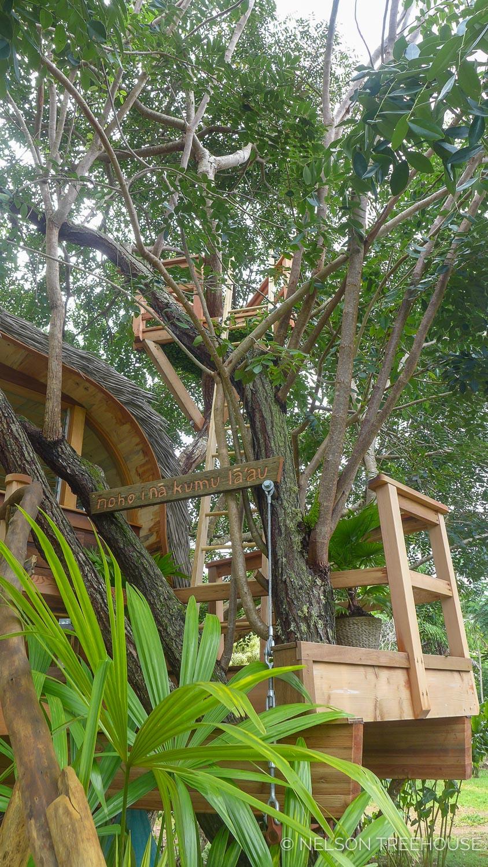 Kauai-Nelson-Treehouse-2018-122.jpg