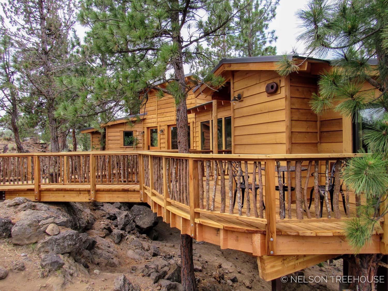 Oregon-Nelson-Treehouse-2018-75.jpg
