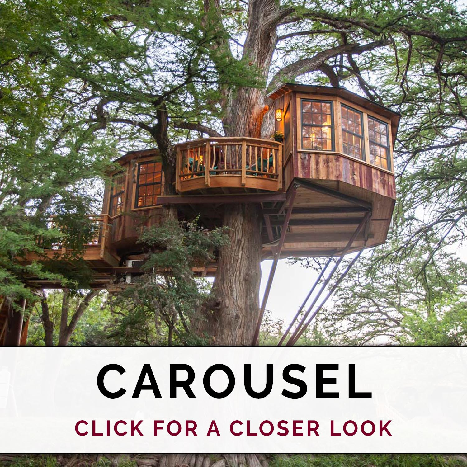 Carousel at Treehouse Utopia