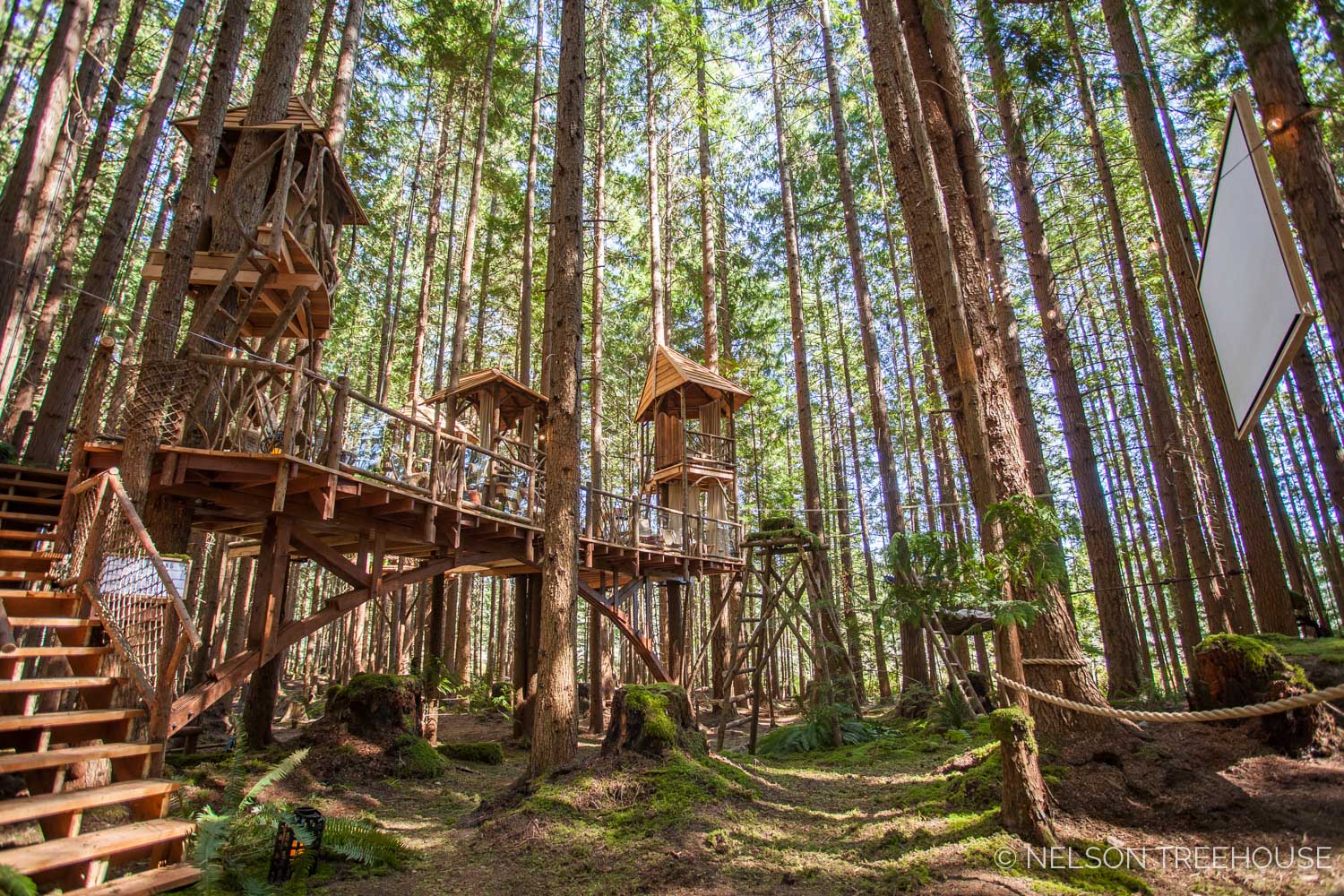 Treetop-Movie-Theater-2018-Nelson-Treehouse-116.jpg