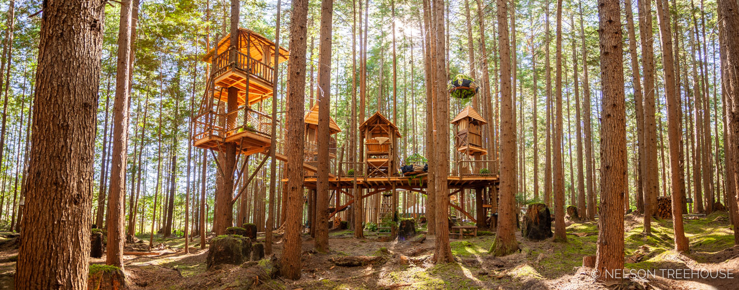 Treetop-Movie-Theater-2018-Nelson-Treehouse-235.jpg