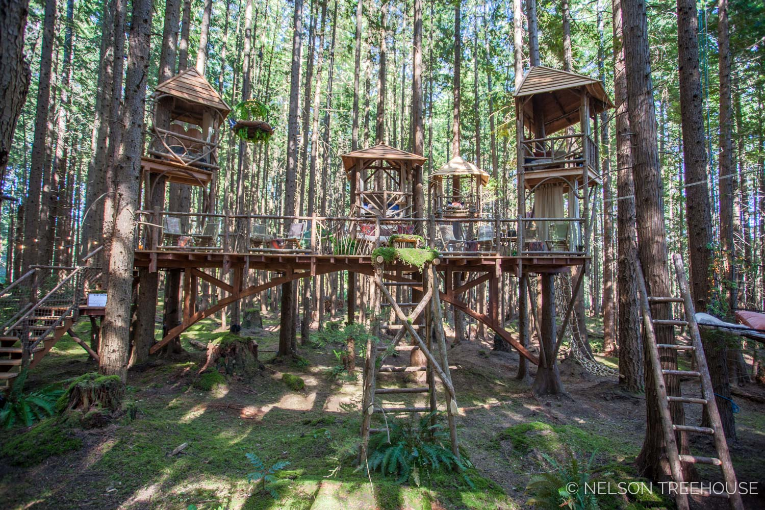 Treetop-Movie-Theater-2018-Nelson-Treehouse-445.jpg