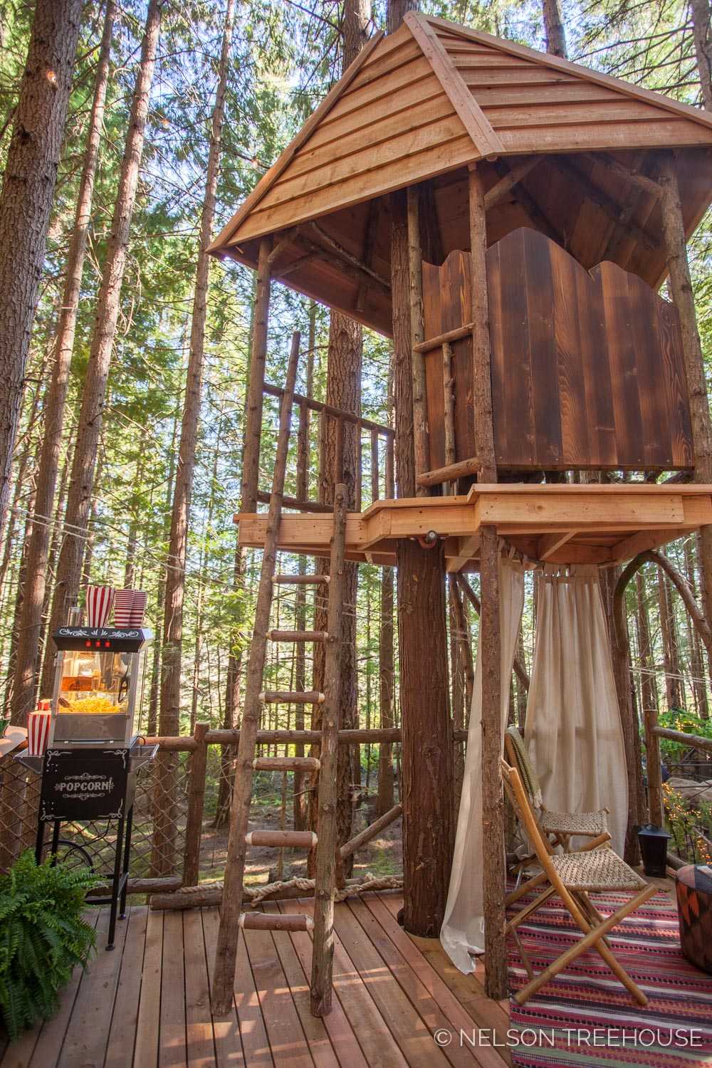 Treetop-Movie-Theater-2018-Nelson-Treehouse-641.jpg