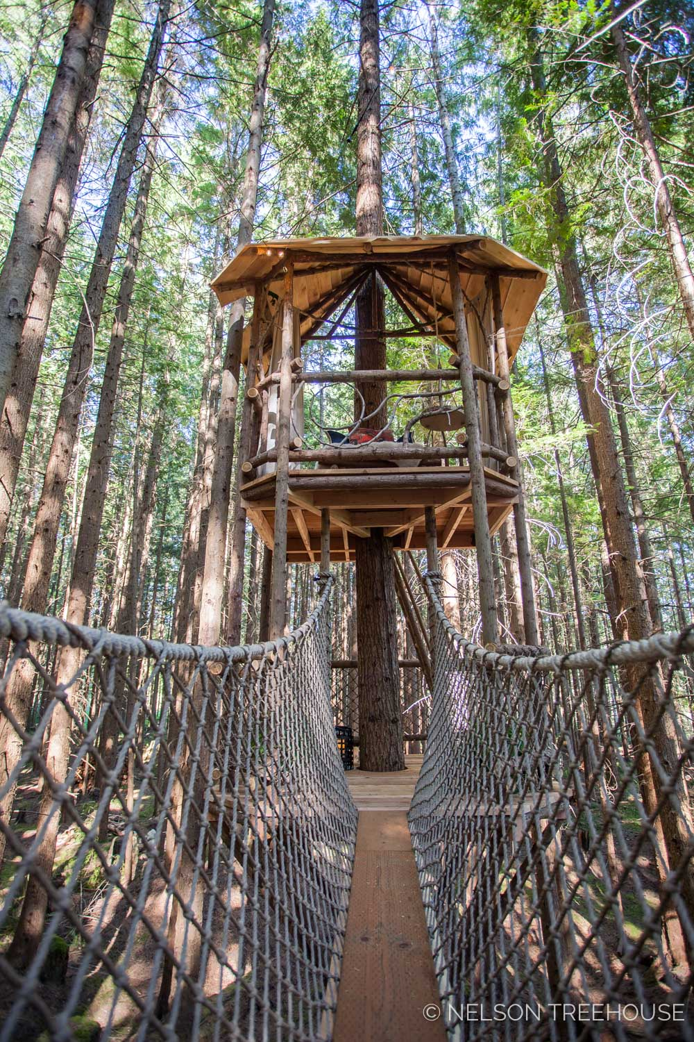 Treetop-Movie-Theater-2018-Nelson-Treehouse-659.jpg