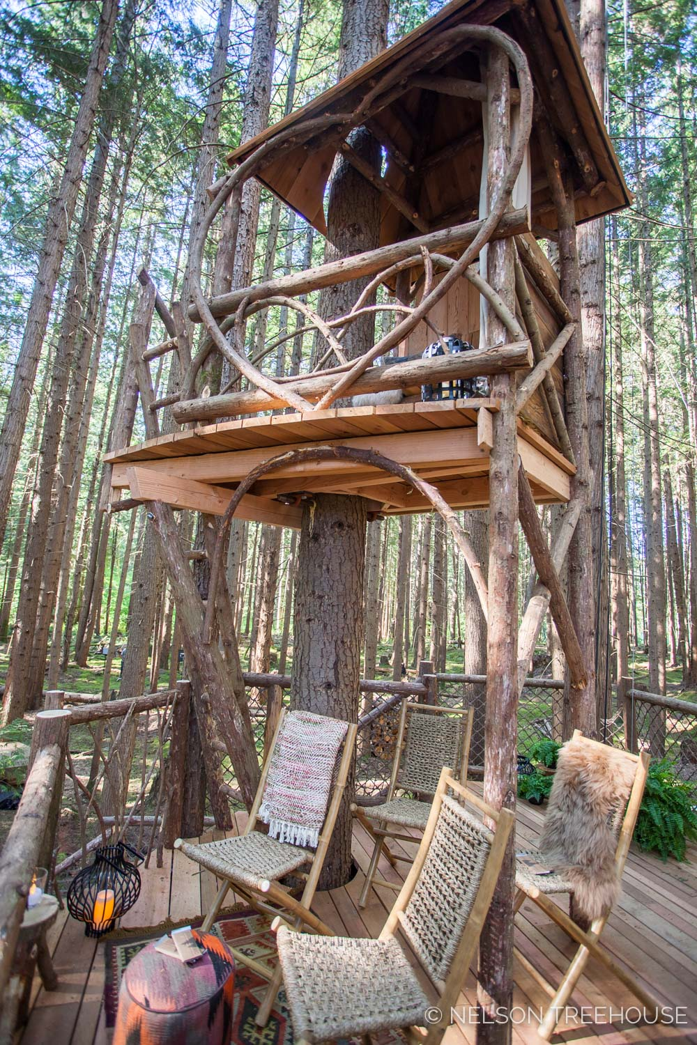 Treetop-Movie-Theater-2018-Nelson-Treehouse-746.jpg