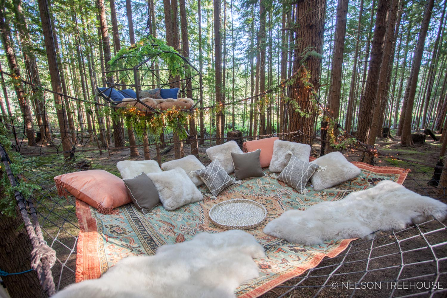 Treetop-Movie-Theater-2018-Nelson-Treehouse-800.jpg