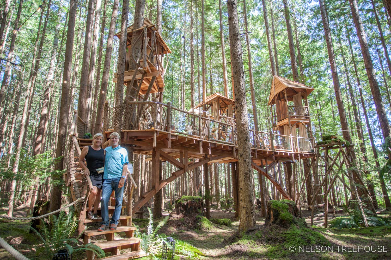 Treetop-Movie-Theater-2018-Nelson-Treehouse-21.jpg
