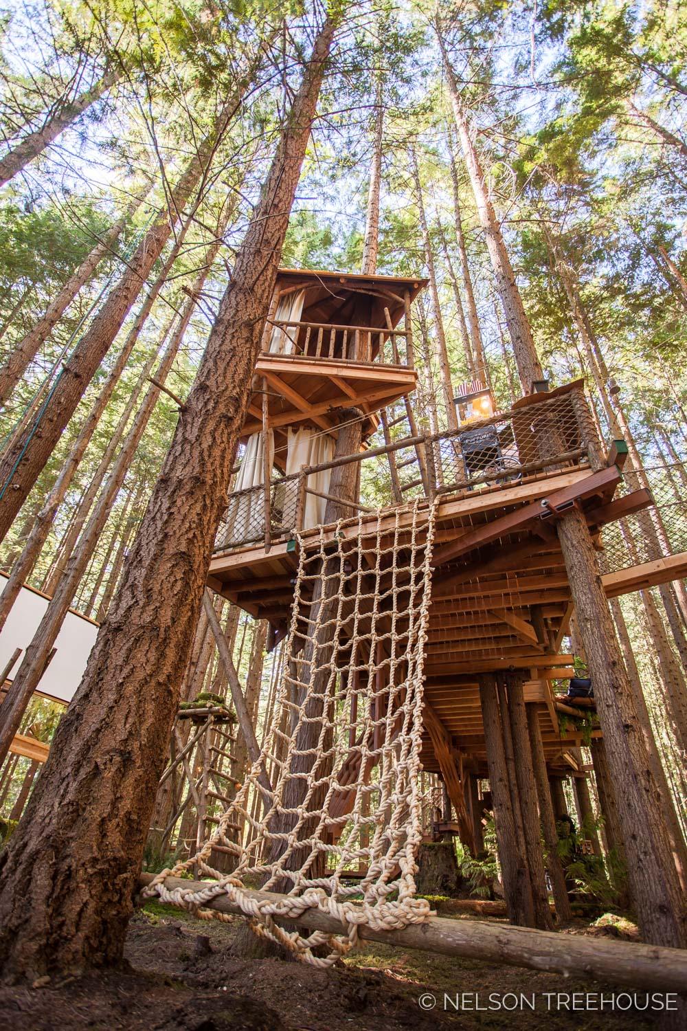 Treetop-Movie-Theater-2018-Nelson-Treehouse-349-HDR.jpg