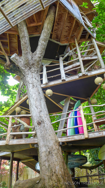 the  goodwin family's multi-platform treehouse  in kauai