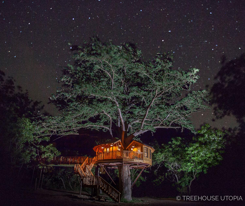 The stars shine bright over  Biblioteque at Treehouse Utopia