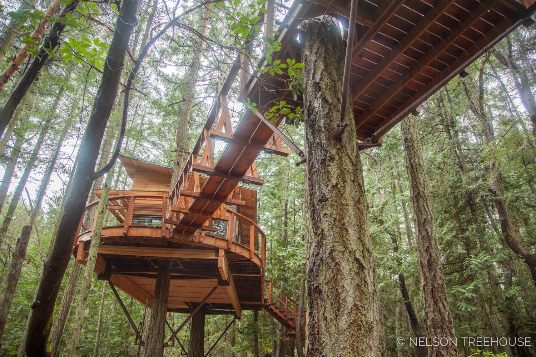 San-Juan-Islands-Nelson-Treehouse-2018-4.jpg