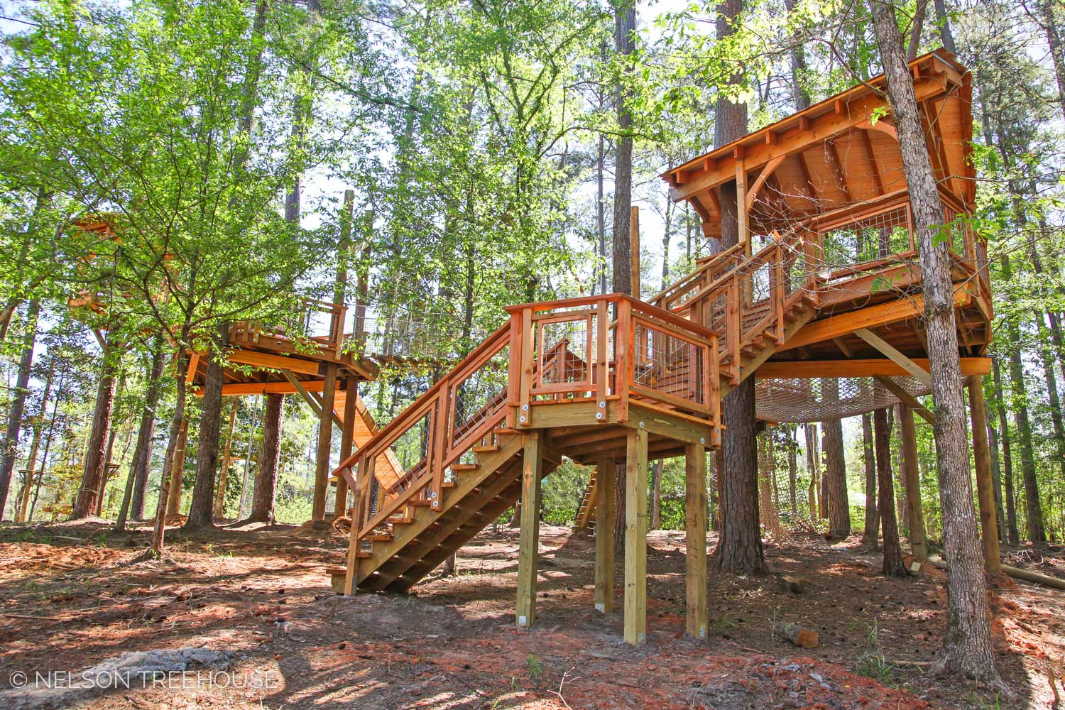 All the places you can go to visit a Nelson treehouse! — Nelson