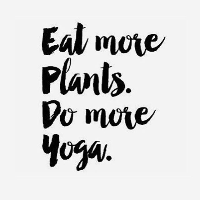 Repost @ritualyoga ・・・ It's that simple. Happy weekend! • • • • • • • • • • #yoga #ritual #montagelagunabeach #lagunabeach #vinyasa #healing #power #meditation #focus #breathe #namastayatthemontage #yesplease