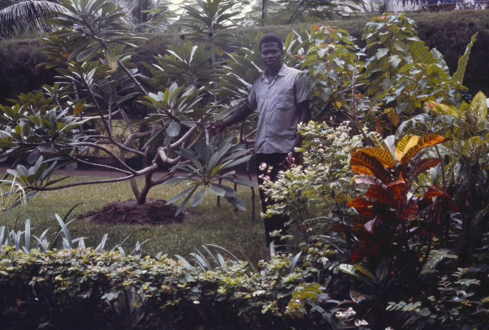 Godwin, the gardener, at the Naifehs' home on Victoria Island.