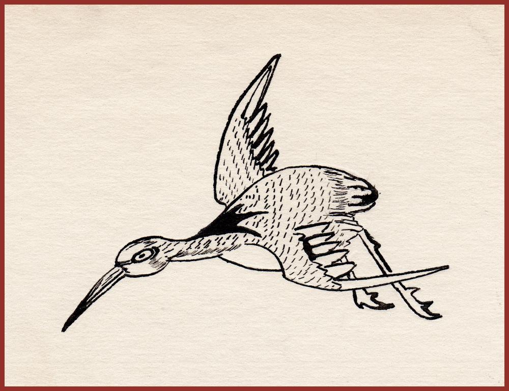 ch6-bird.png