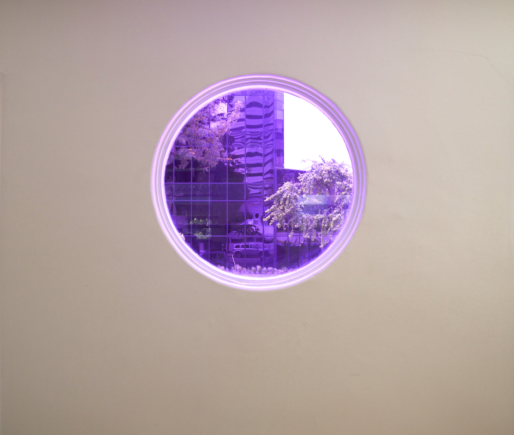 Martine Syms   Belief Strategy IX , 2015, Color filter on window, 26 inches in diameter, Edition of 1 plus I AP