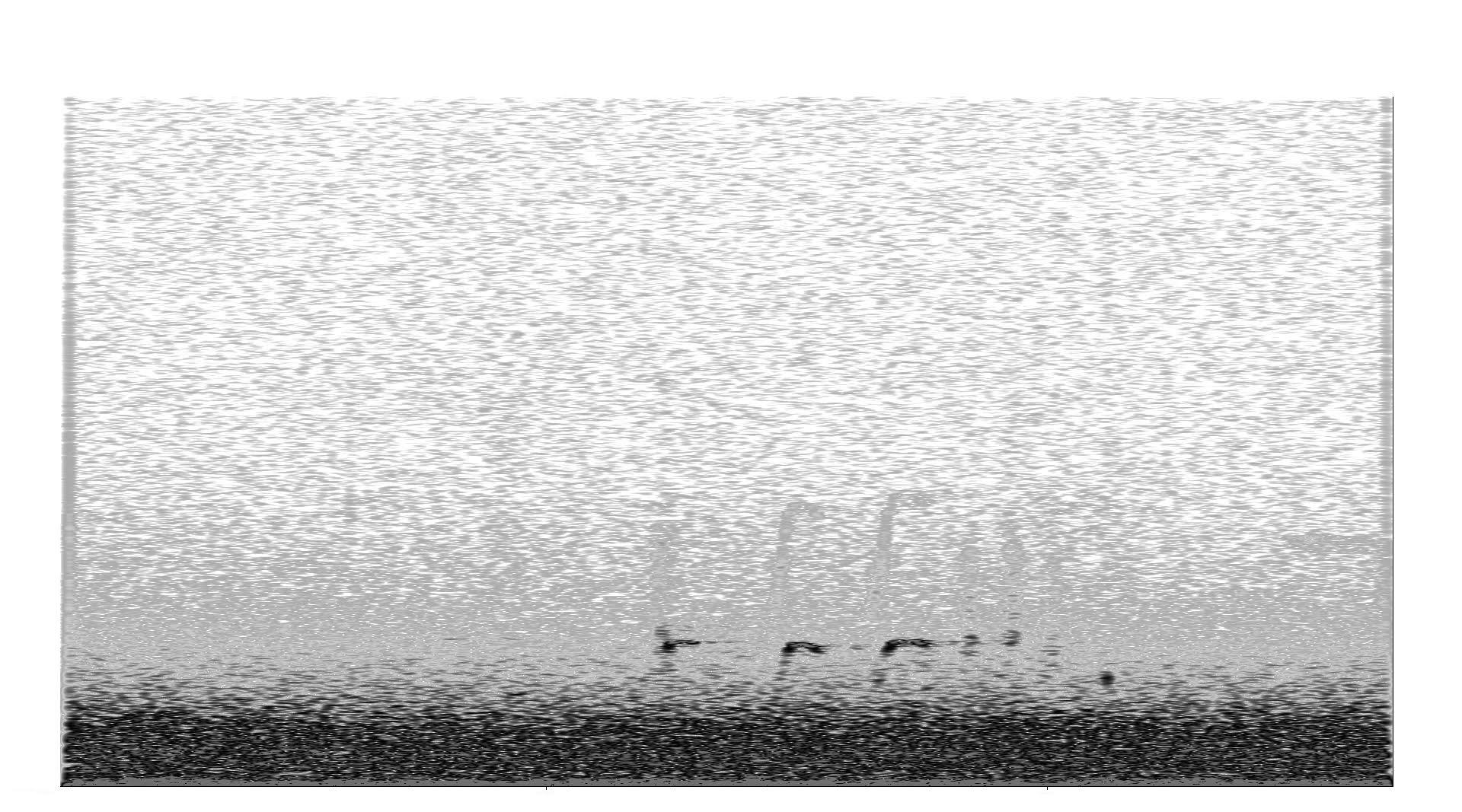 K.r.m. Mooney   Spectrogram I , 2018, Spectrogram, 6 x 3 ⅛ inches