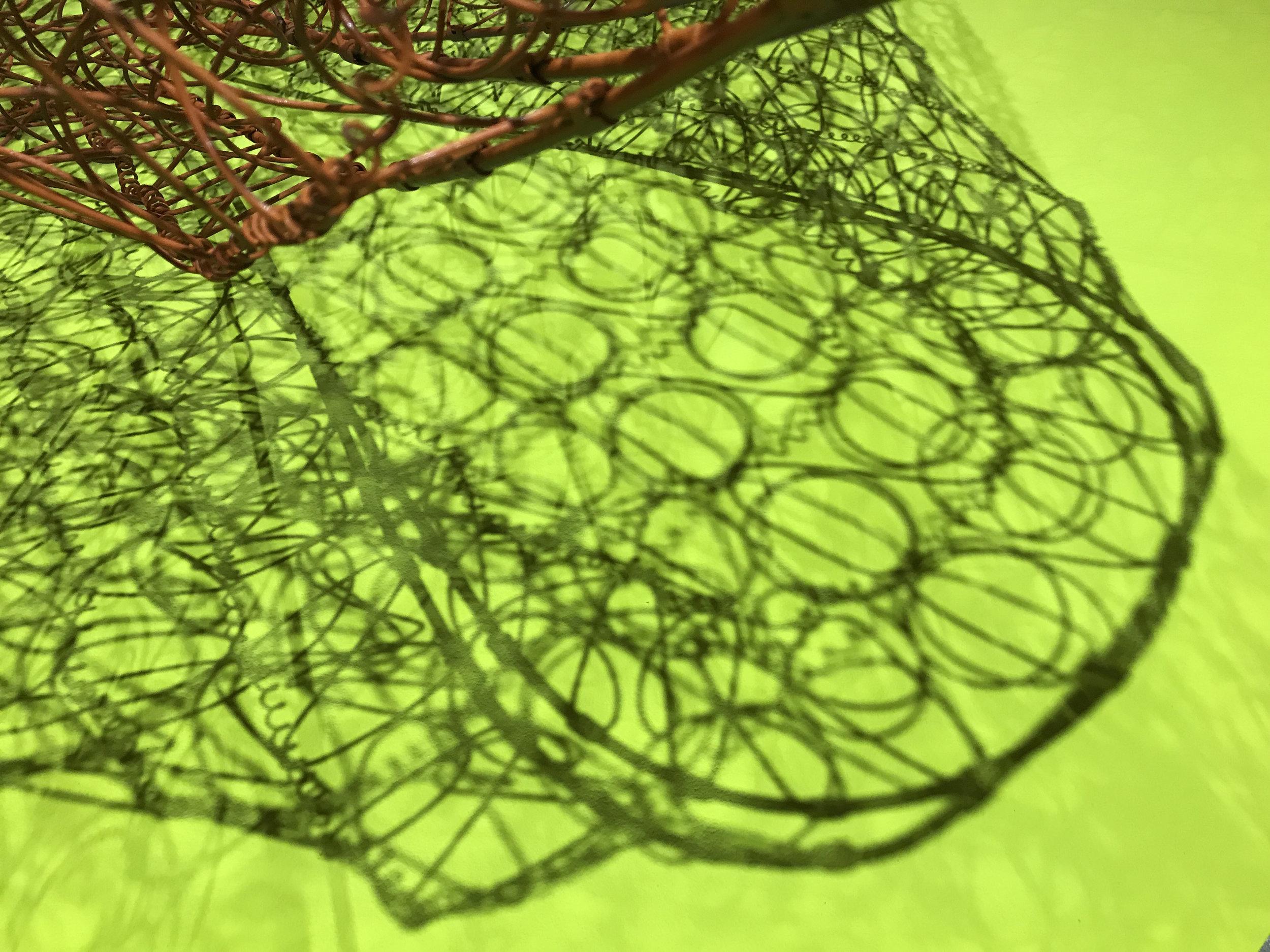 300 orange on chartreuse loop shadow .jpg