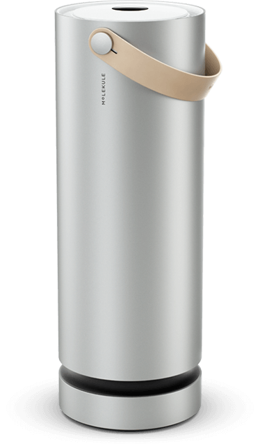 Molekule Air Purifier - There are other options, but this one is AWESOME. Looks good, easy to move around the house, and performance is top notch. Buy one and smell + feel the difference. It's like ocean air in your home! You get $75 off at this link HERE.