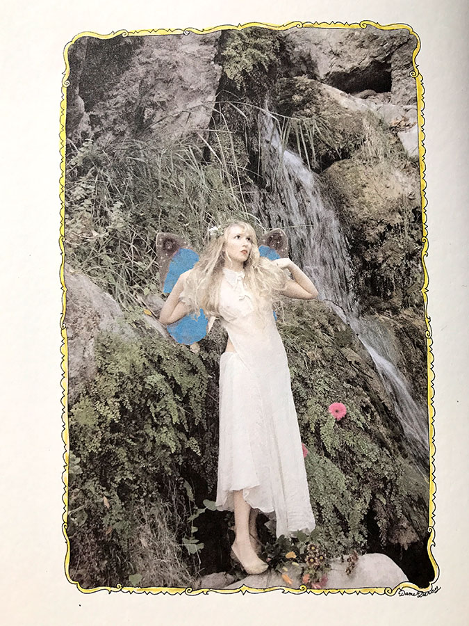 Author photo of Darcy