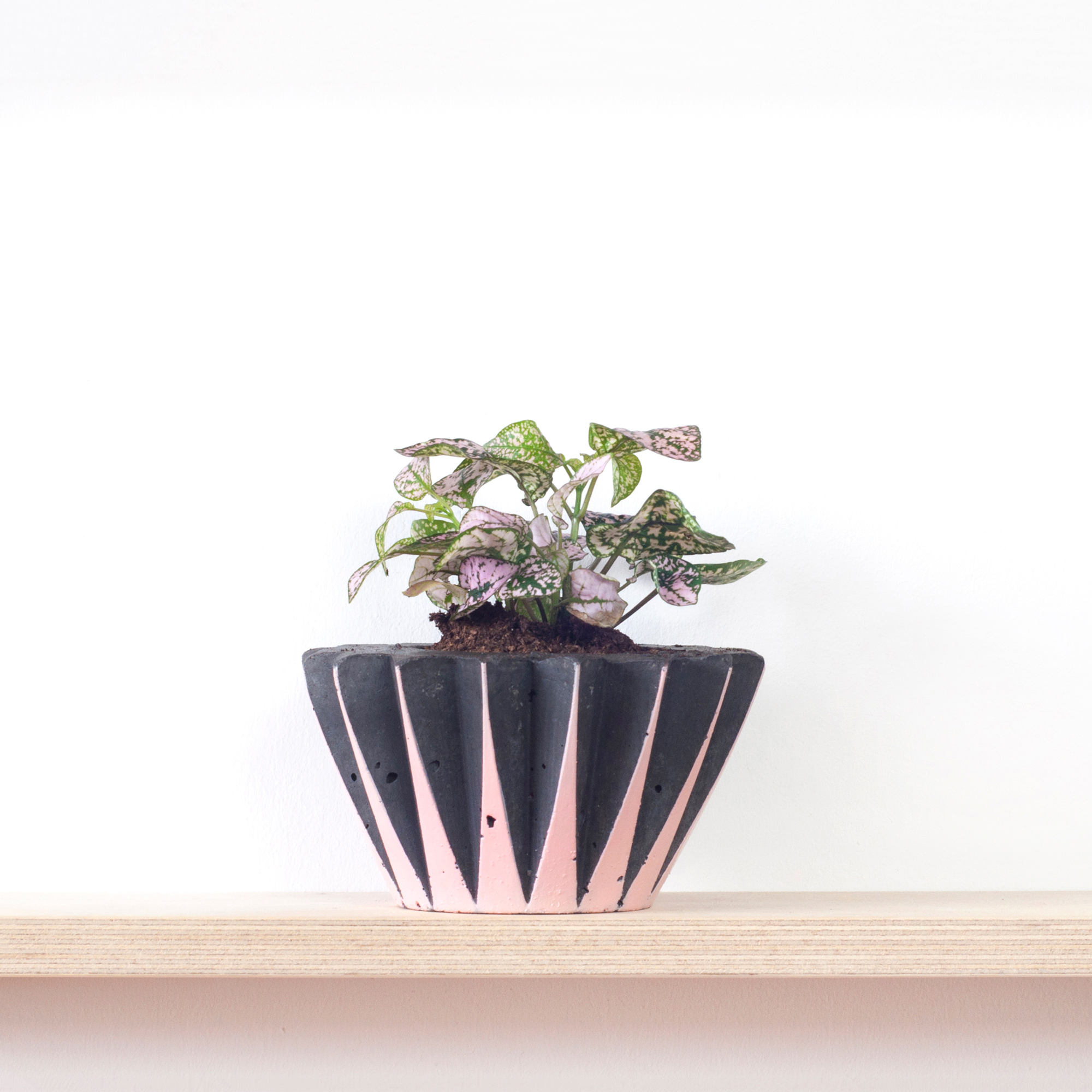 2-plantpot-geofleur-web.jpg