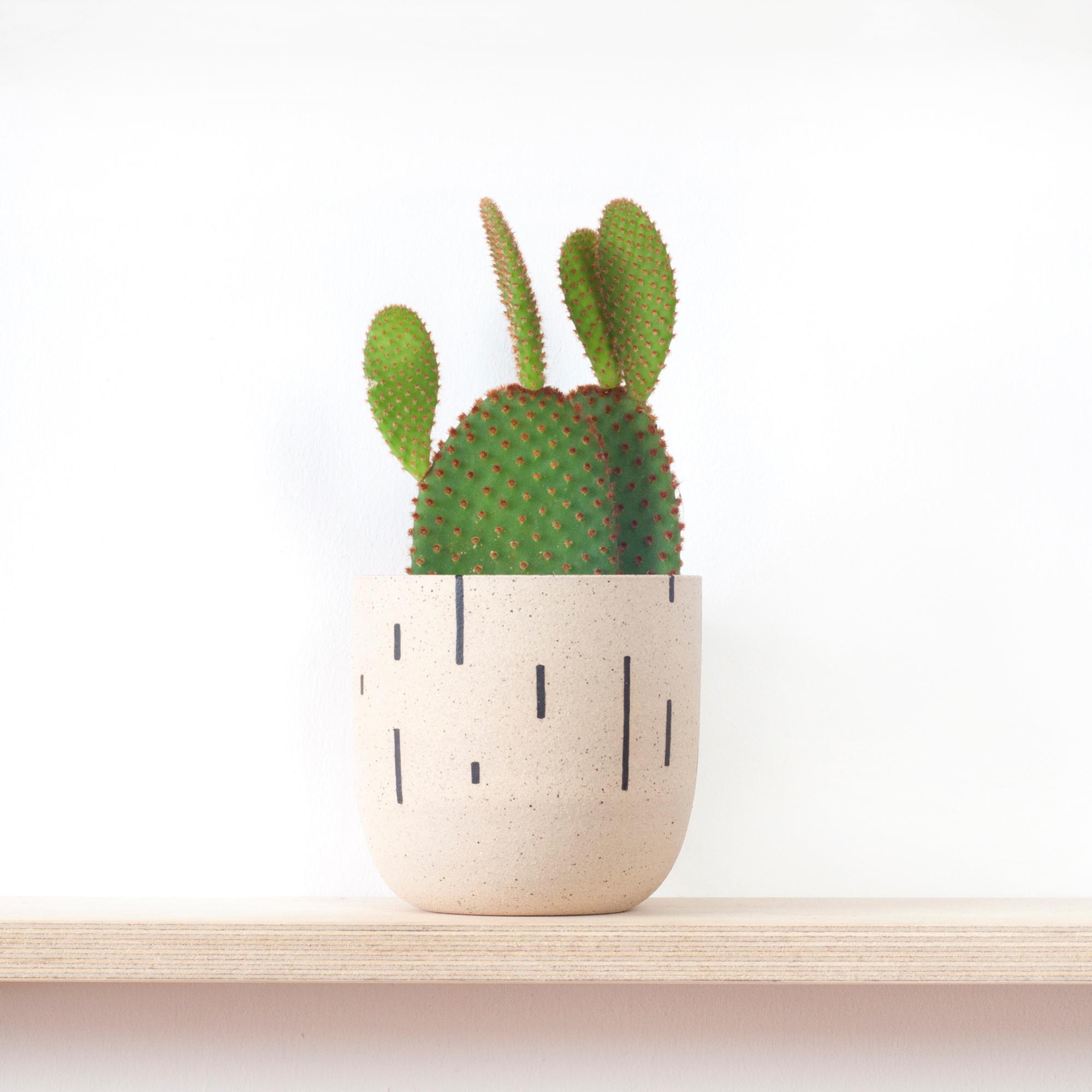 5-plantpot-tillyhemingway-web.jpg