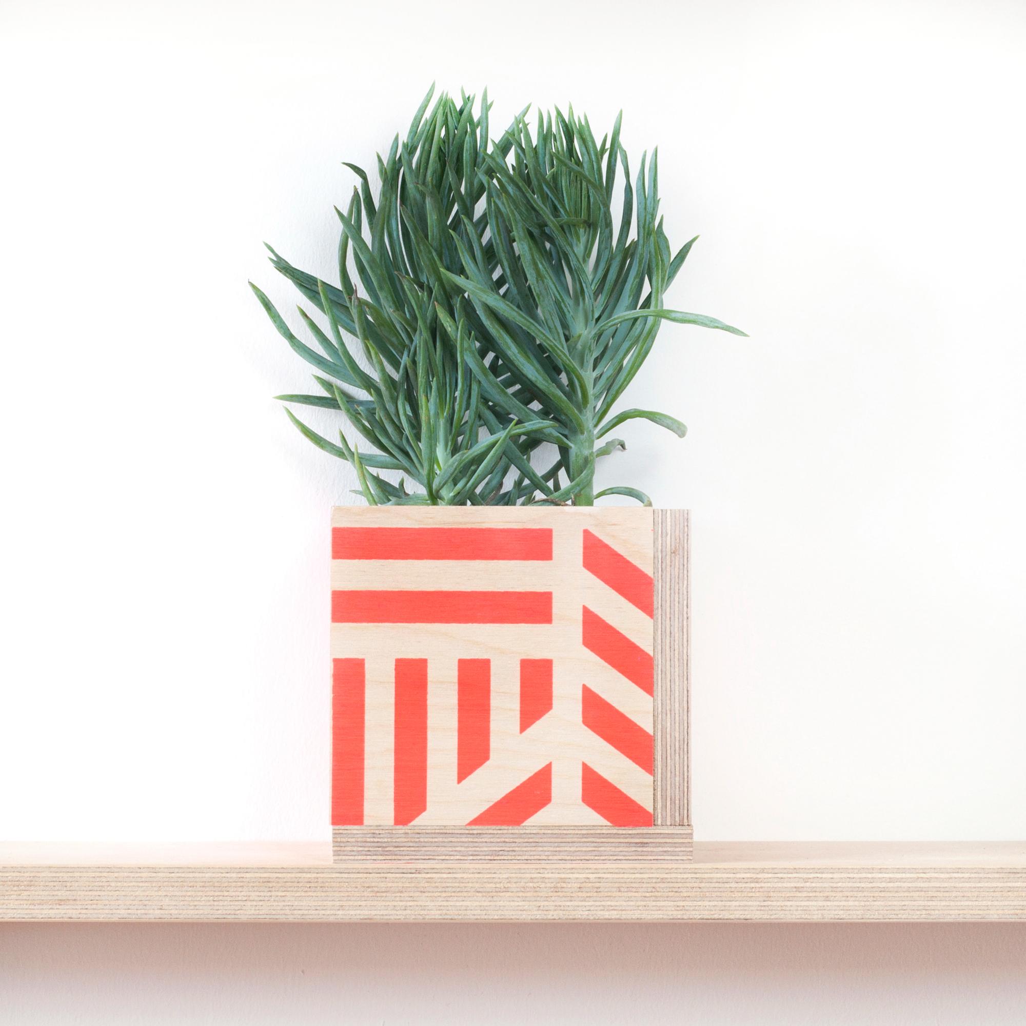 10-plantpot-kanganarora-web.jpg