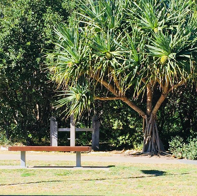 After our last guests departed this morning, we decided to treat ourselves to a walk on the beach followed by a coffee at our local @beachstonebarandcafe  #bnb #pandanustree #coffsaccommodation #coffscoastnsw #wintergetaway #wintergetaways #wellnessretreats