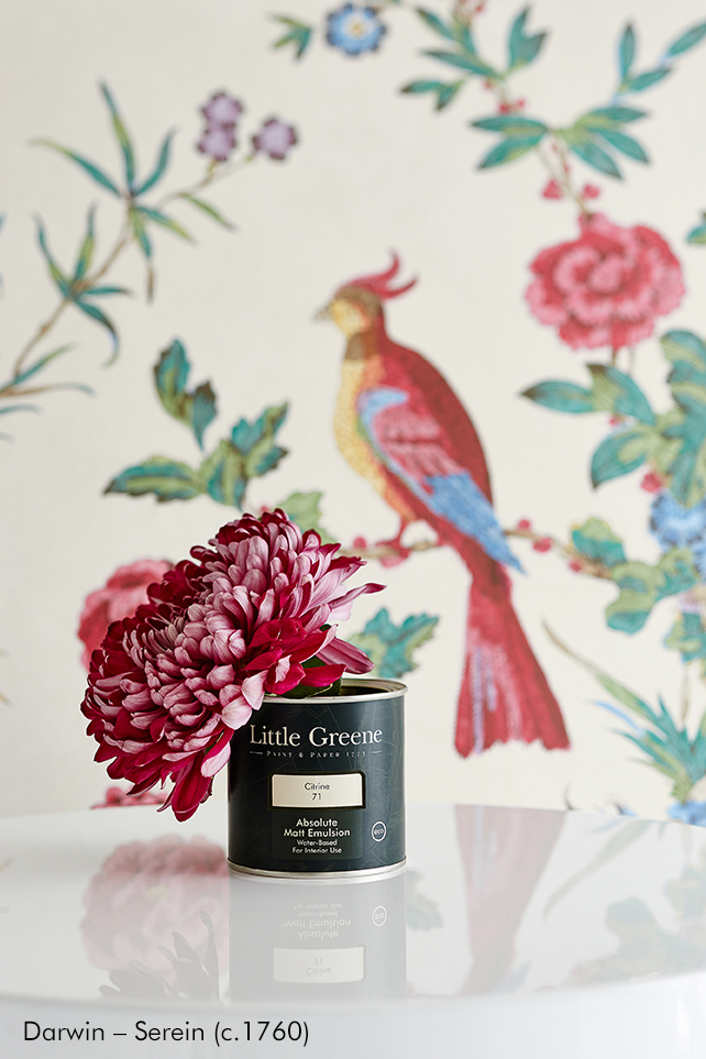 Little Greene dažai - Absolute matt emulsion.jpg