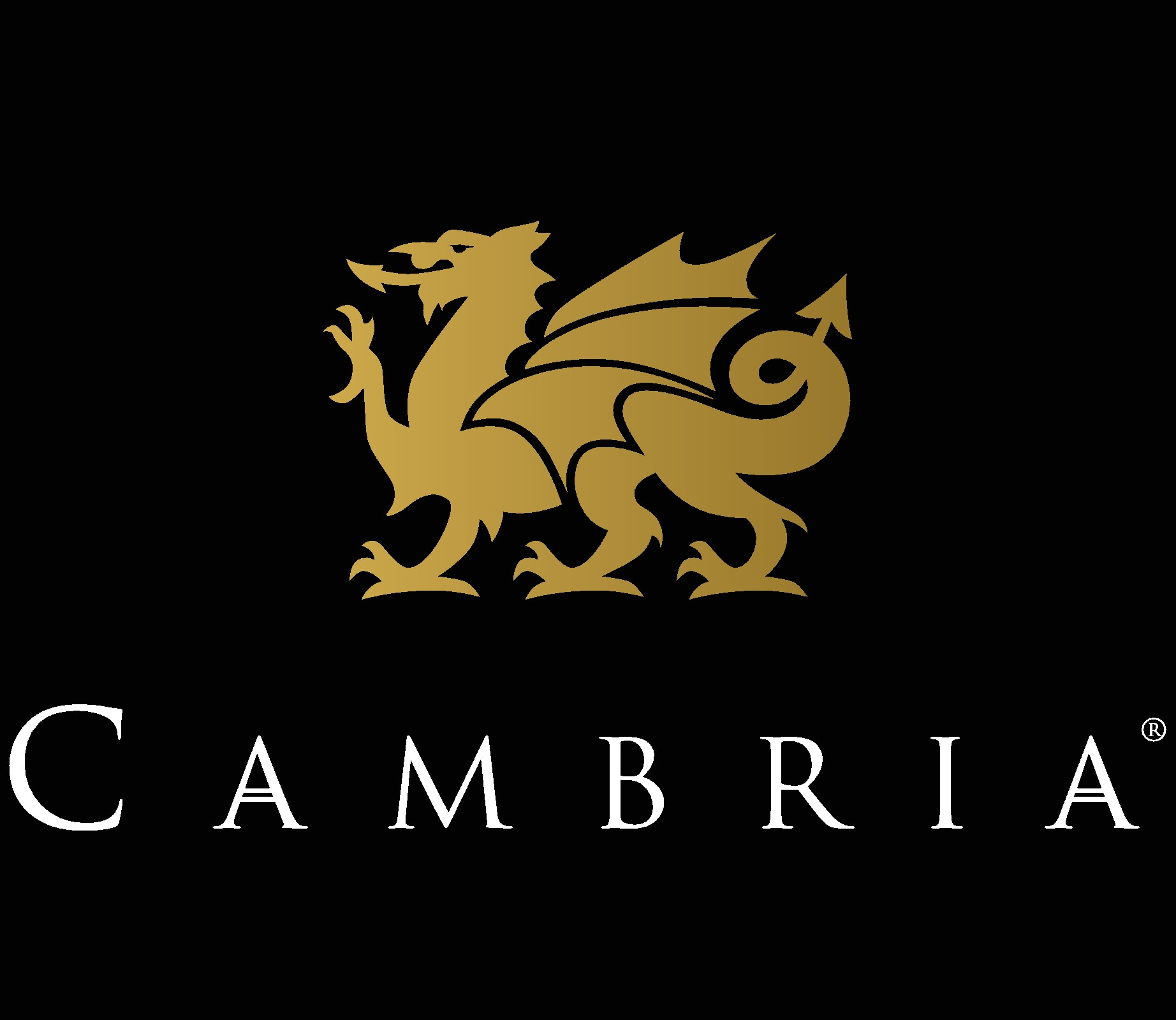 cambria_V_BBack_gradient (8).jpg