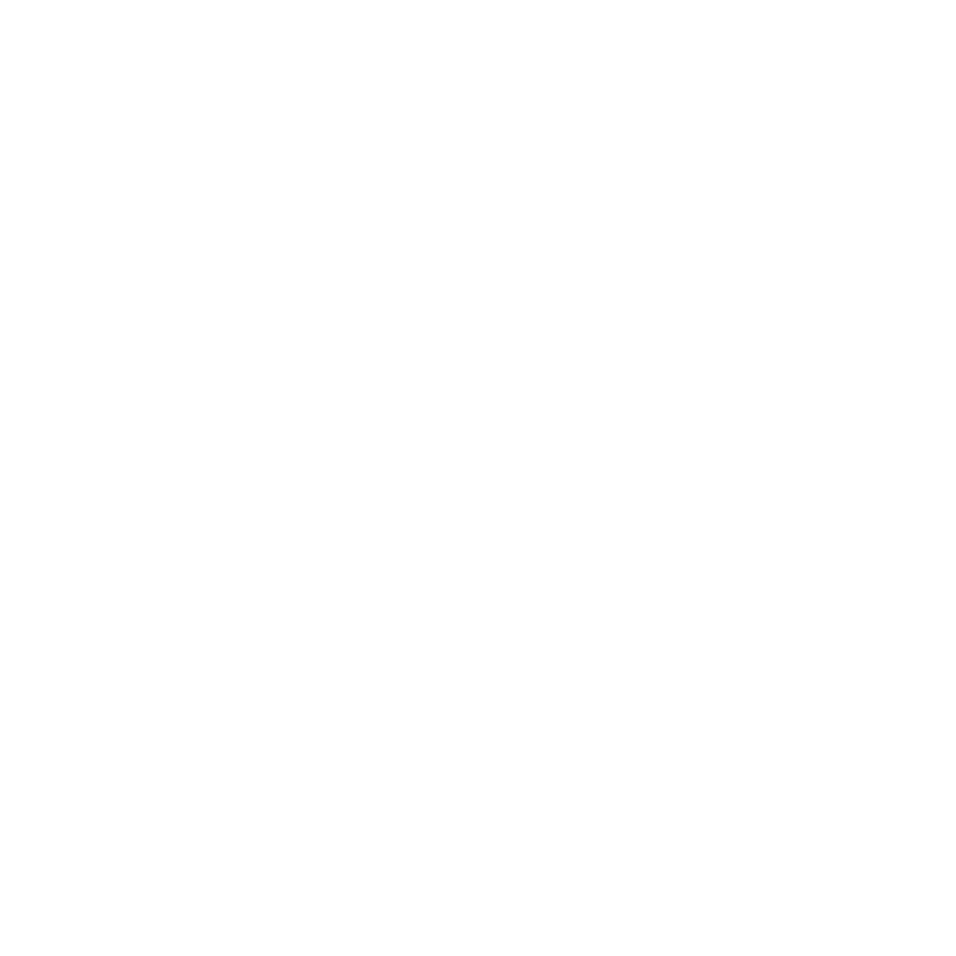 Bashment Brunch LOGO WHITE.png