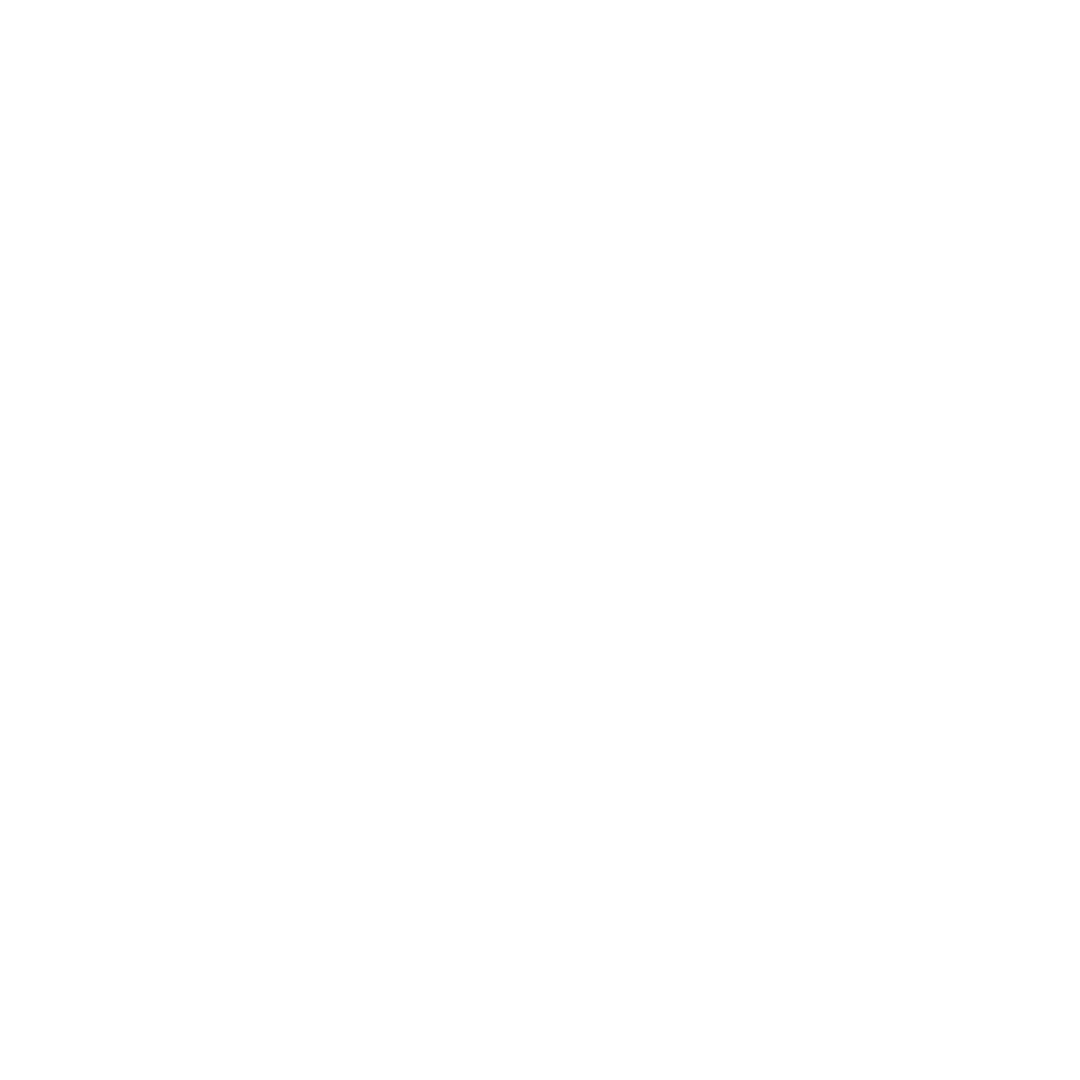 Hip Hop Brunch LOGO WHITE.png