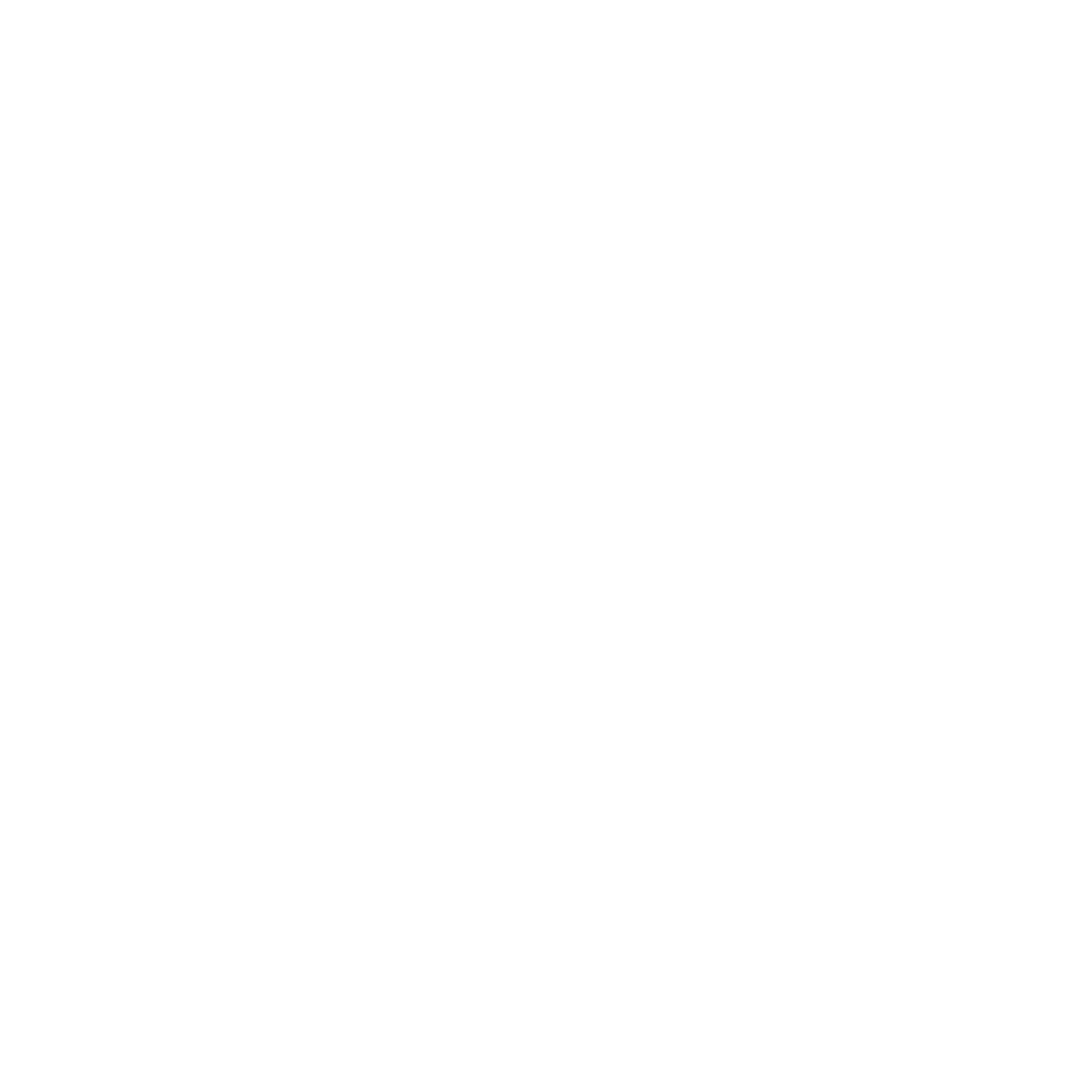 The 90's Brunch LOGO WHITE.png
