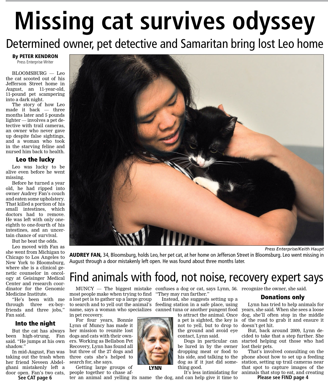 Missing Cat Survives Odessey