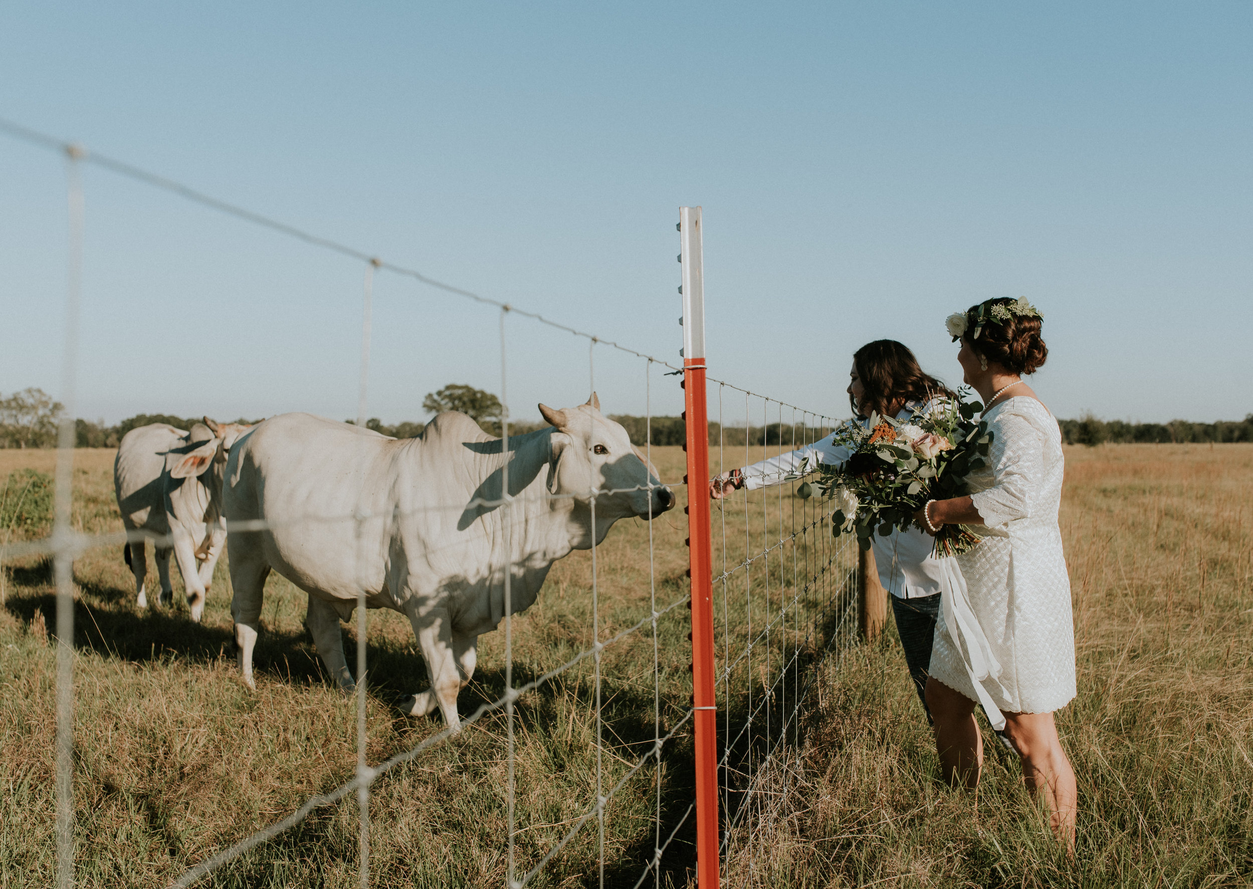 wedding_2017-163.jpg