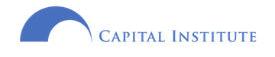E Capital Institute Logo - hi-res transparent.jpg