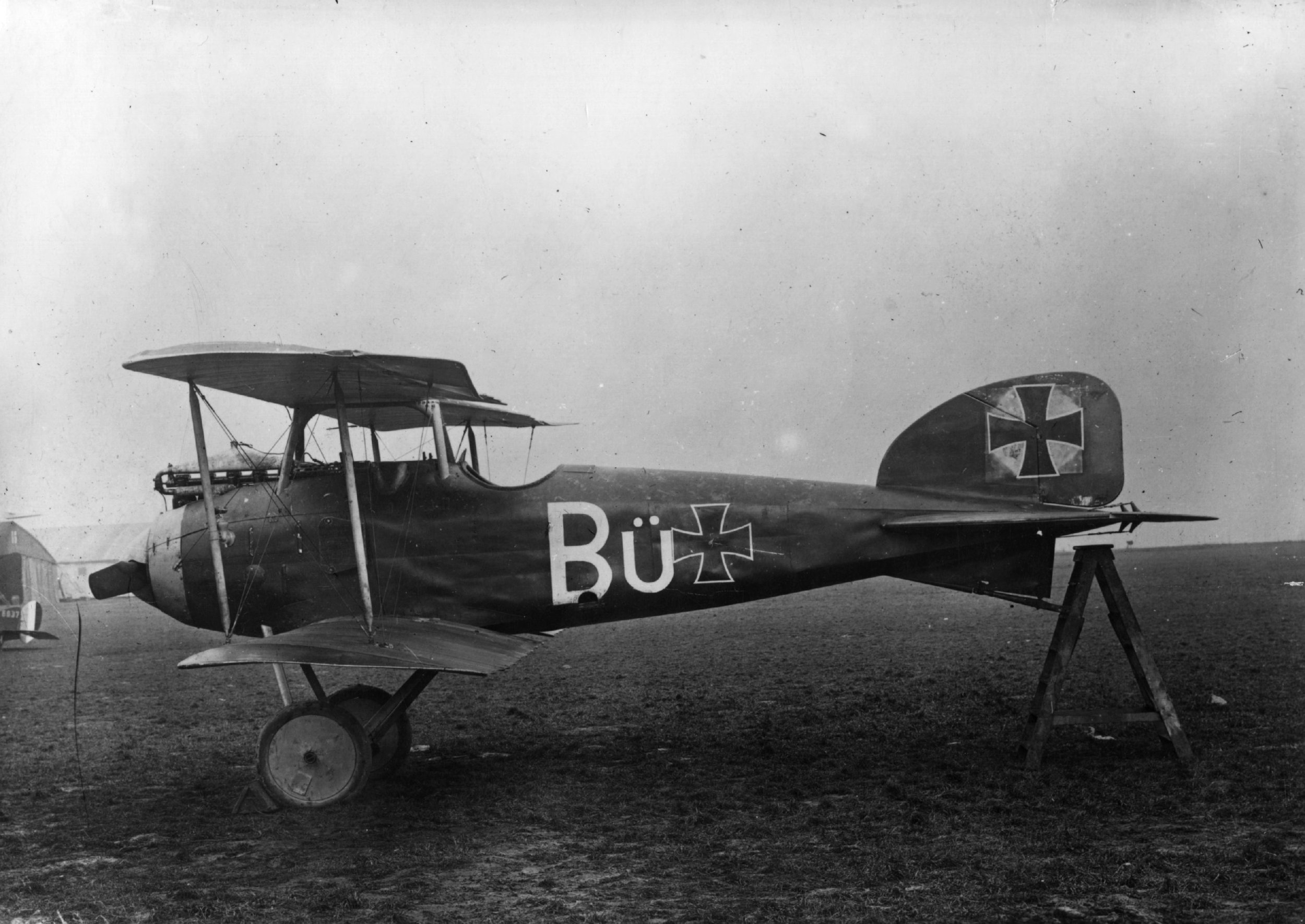 The German aircraft Albatros D.I. Together with both Albatros D.II and D.III this was the most used plain by Richthofen during his battles as its light weight let the pilot's flight style nimbler.