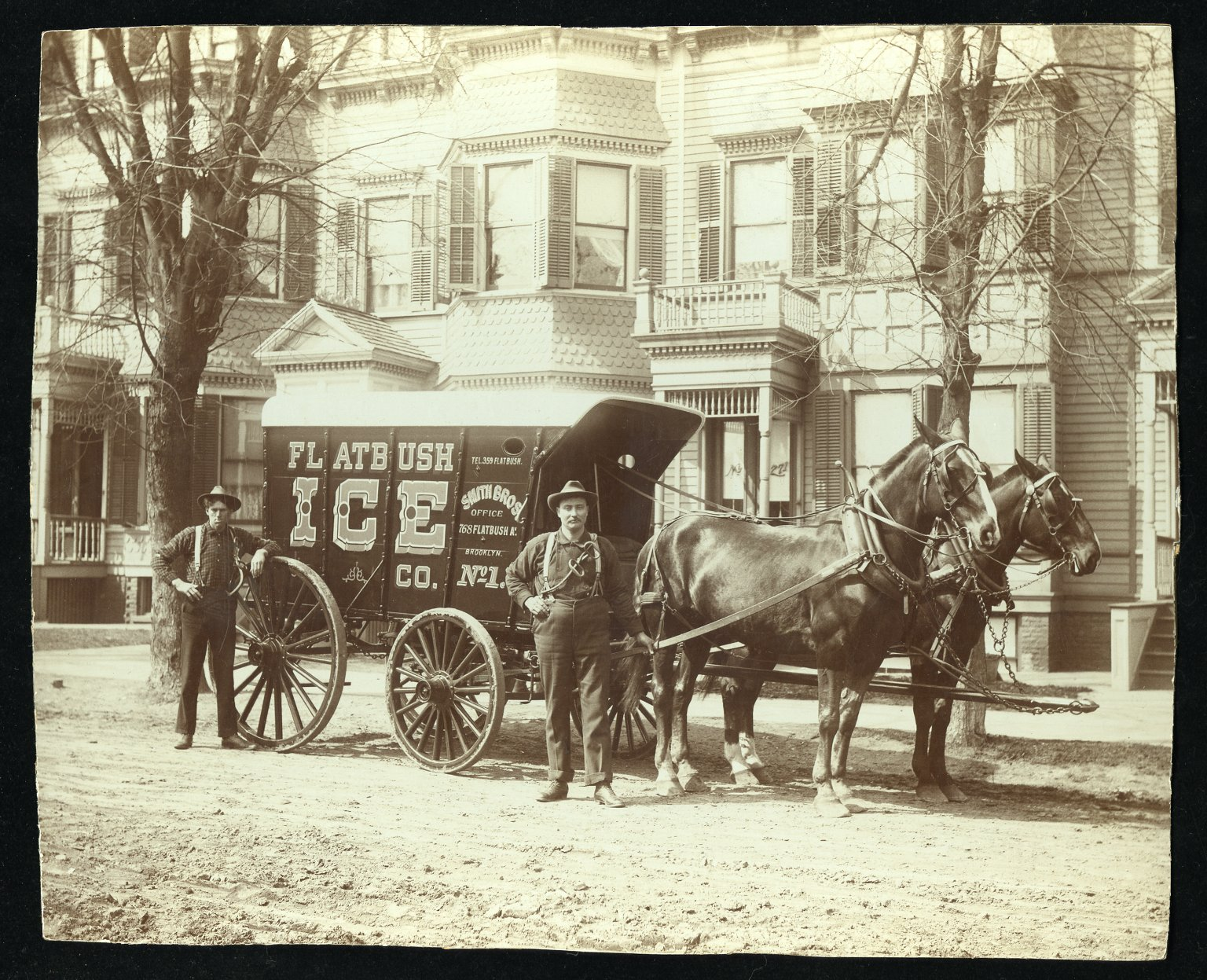 Withrop Street, Flatbush, Brooklyn, 1904