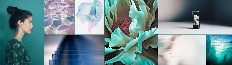 Credit to those that have inspired us (clockwise from left to right): Color Collective, Madewell on Pinterest, Yuki Fujisawa, Georgia O'Keeffe, Janneke Luursema, Jeremiah Klein, Franz Gruenewald and Nobuhiro Nakanishi