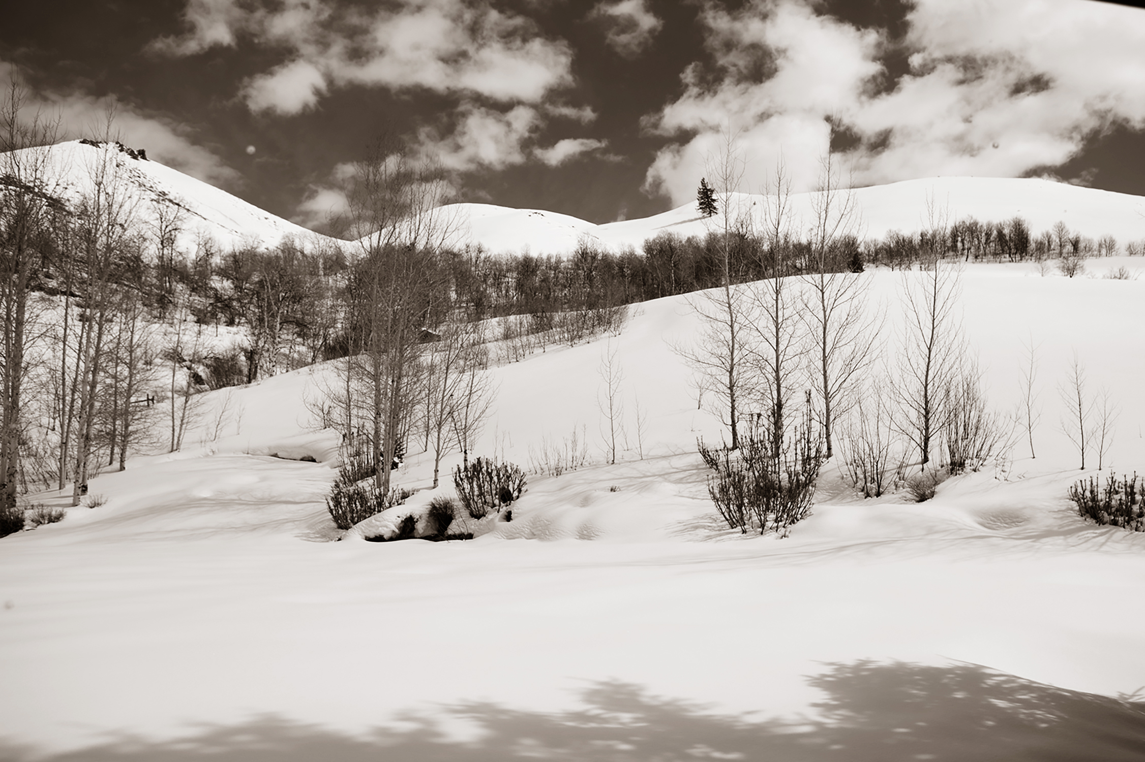 sunvalley_hillside_10.jpg