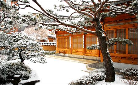 Snowy Courtyard.jpg