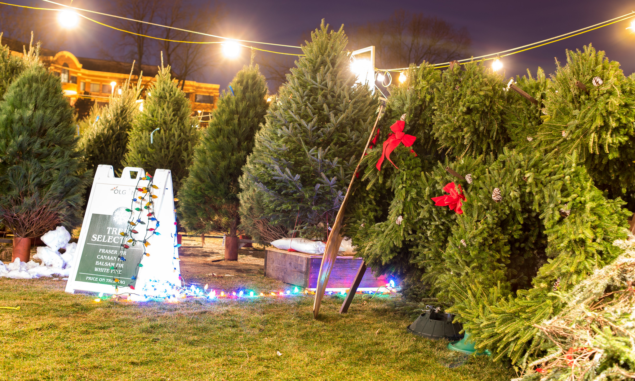 OLG Christmas Tree Lot OPEN! - Sponsored by OLG Men's Club