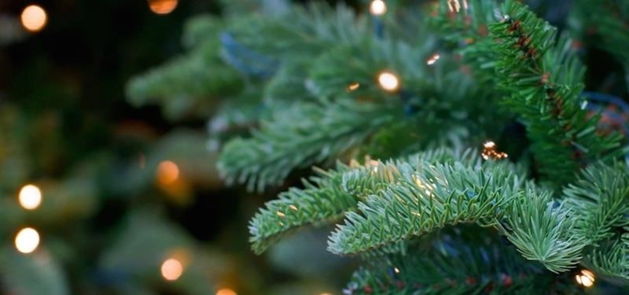 fill-ugly-bare-spots-your-christmas-tree.1280x600.jpg