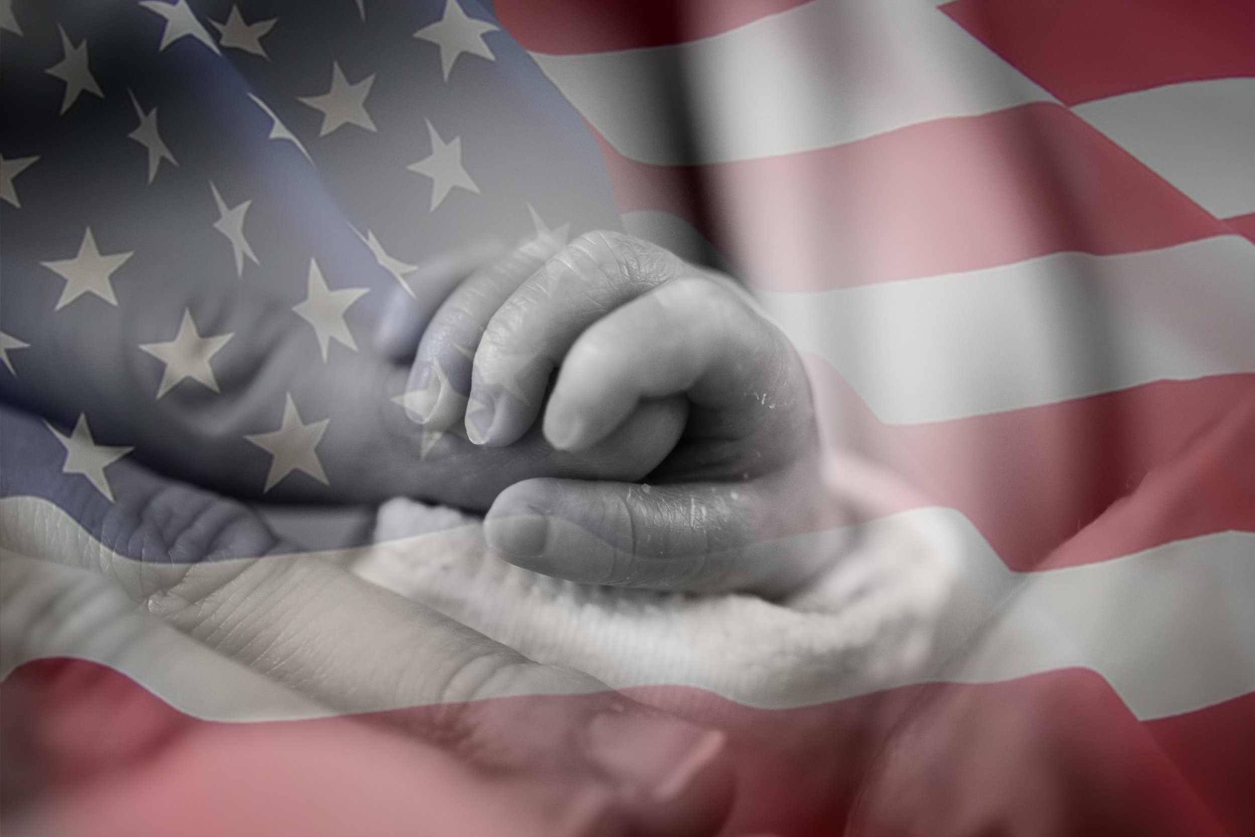patriotic pro-life.jpg