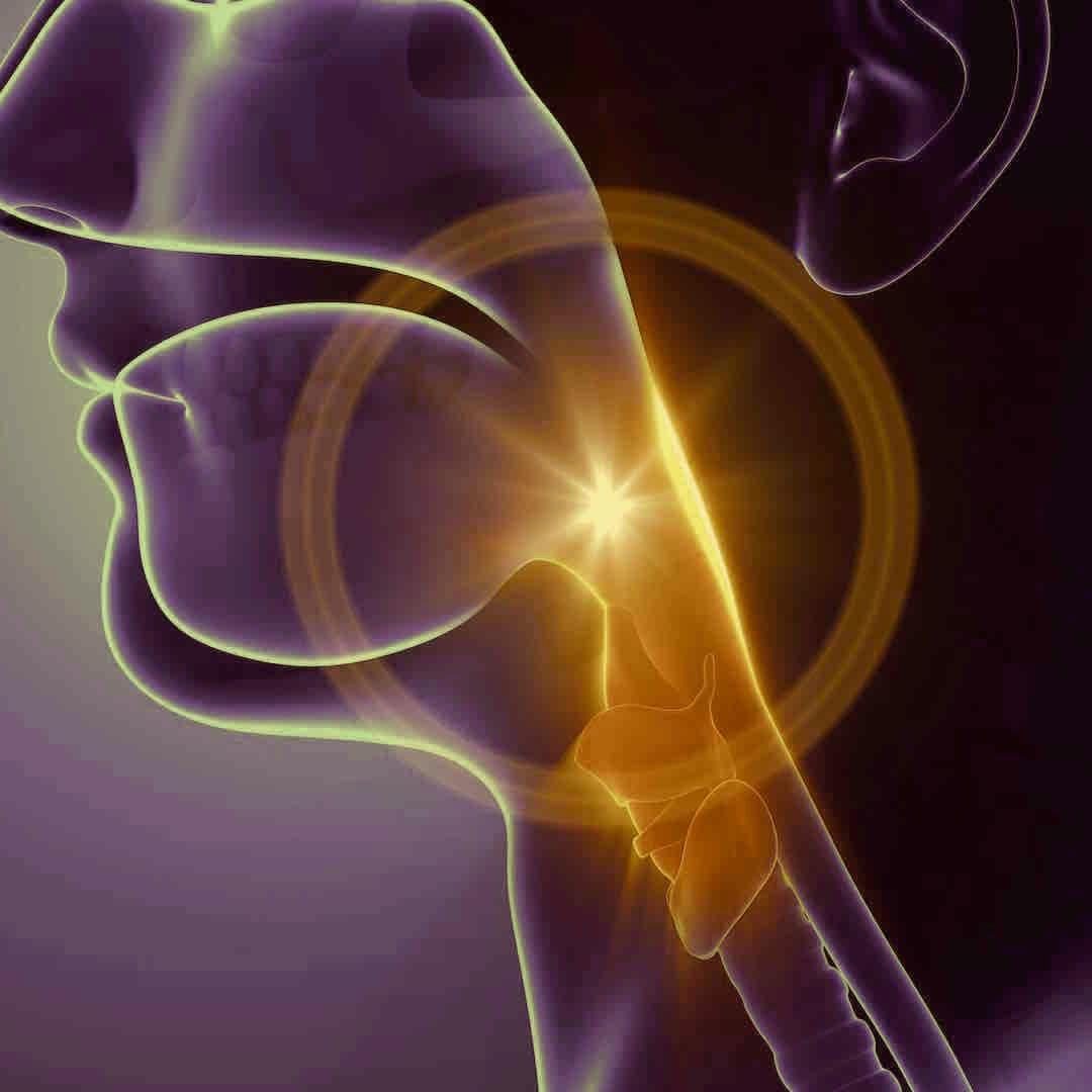 Throat_voice_swallow+problems.jpg