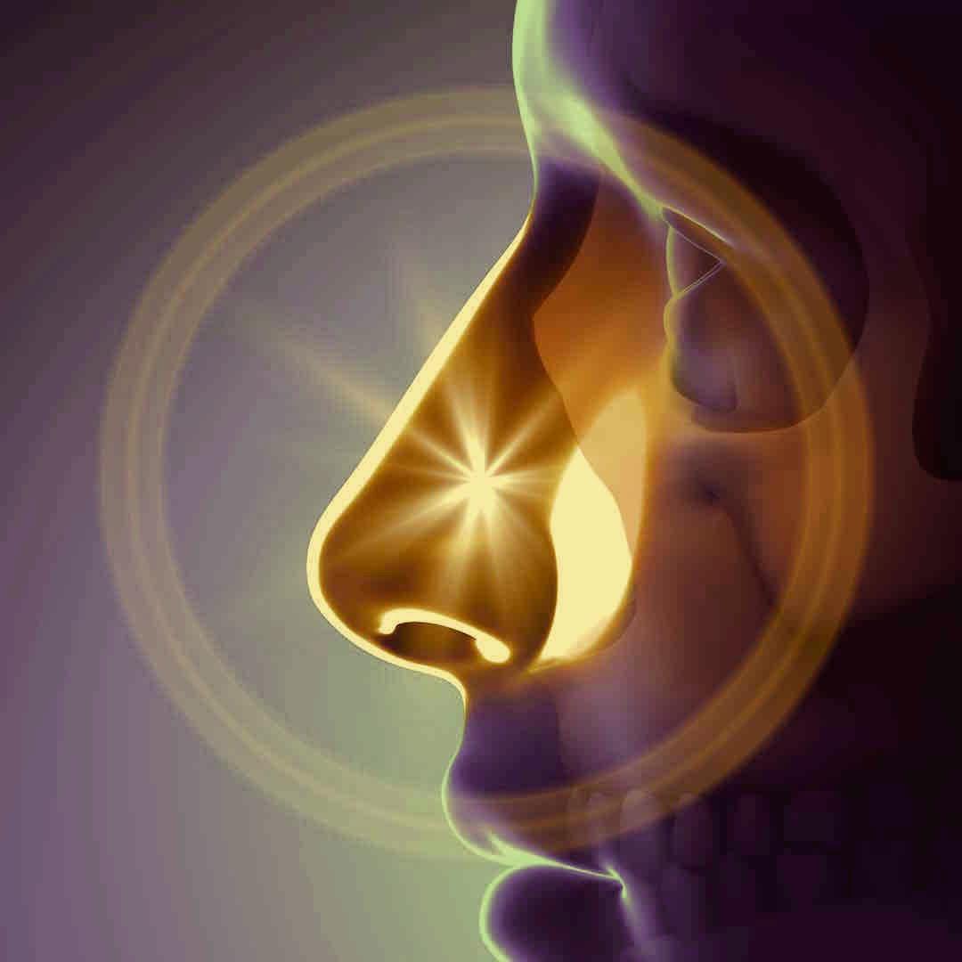 Rhinoplasty_sinuses_nasalblockage.jpg