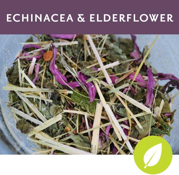 ECHINACEA & ELDERFLOWER   Herbal tisane with oatstraw, echinacea flower and leaf, elderflower and spearmint