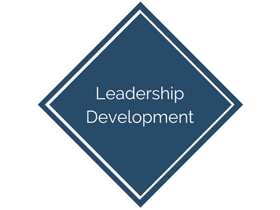 Leadership Development for Seniors Housing Investment