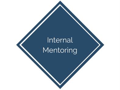 Internal Mentoring for Seniors Housing Investment