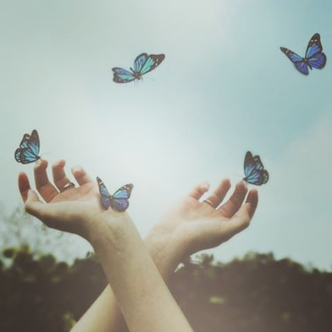 I dreamed I was a butterfly flitting around in the sky. #dream  #butterfly #blue #pastel #nature